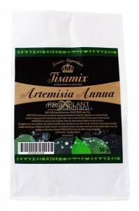 artemisia-annua-92196